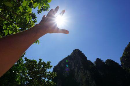 Catch the sun!